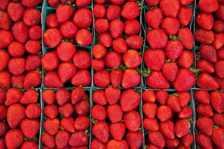 فوائد الفراولة للوزن … فوائد لا تتوقعها للفراولة في إنقاص الوزن بطريقة صحية