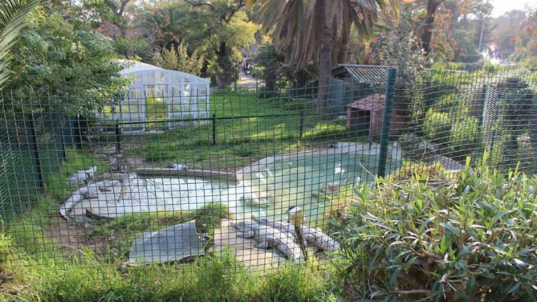 حديقة الحيوان في تونس العاصمة …. تعرف علي مواعيد الزيارة وسعر التذاكر بها