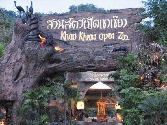 حديقة الحيوان في بتايا … جولة داخل حدائق الحيوان في بتايا والتعرف عليها