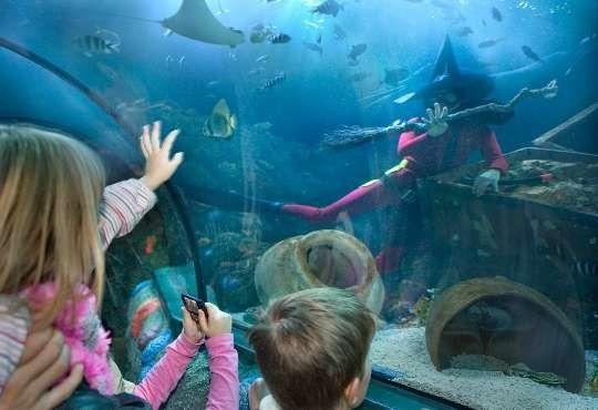 حديقة الحيوان في ميلان.. تعرف علي اهم الانشطة بها واقسامها