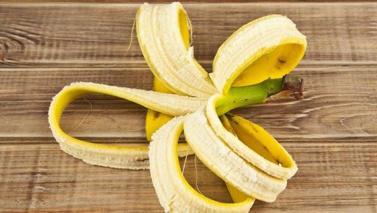 فوائد قشر الموز للشجر