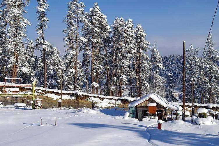 اذربيجان في الشتاء.. 8 أشياء تدفعك إلى زيارة اذربيجان في الشتاء