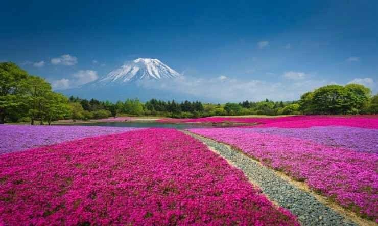 أبرز المعالم الطبيعية في اليابان