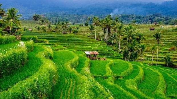 الطقس في إندونسيا في شهر يونيو