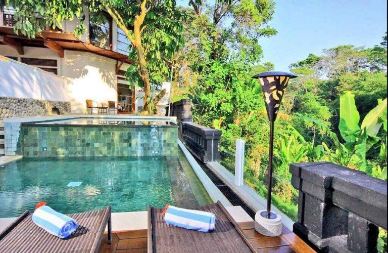 أجمل الفنادق الرخيصة في بونشاك .. وسط طبيعة اندونيسيا اللطيفة