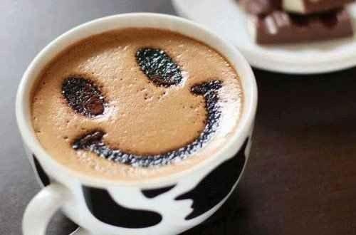 طريقة زراعة القهوة .. إستمتع بمذاق قهوة رائع مع زراعتها بنفسك فى منزلك ….