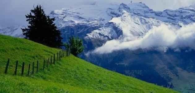 معلومات عن سويسرا .. تعرف أكثر على أجمل بلاد جبال الألب ……………….