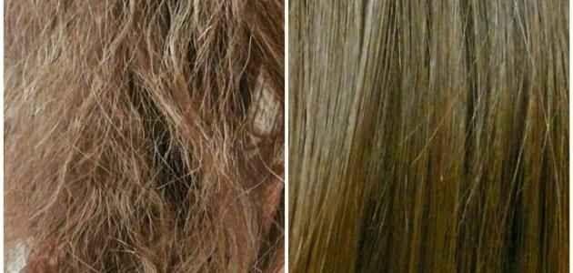 علاجات الشعر الجاف .. تخلصى من مشكلة الشعر الجاف التى تؤرقك …………