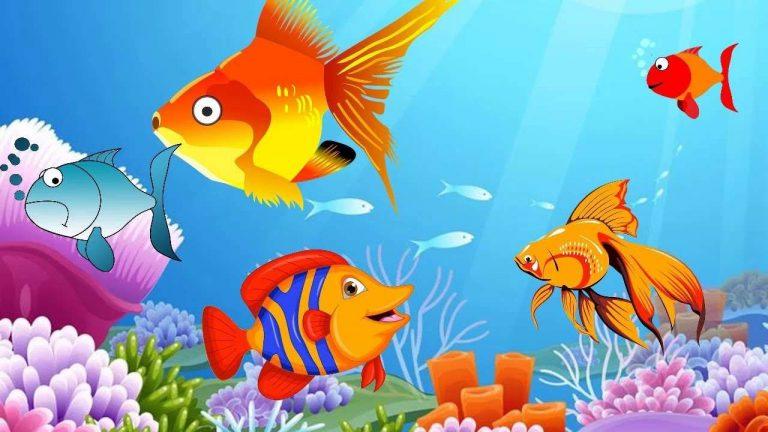 معلومات للاطفال عن السمك .. مجموعة معلومات عن الأسماك تناسب طفلك ..