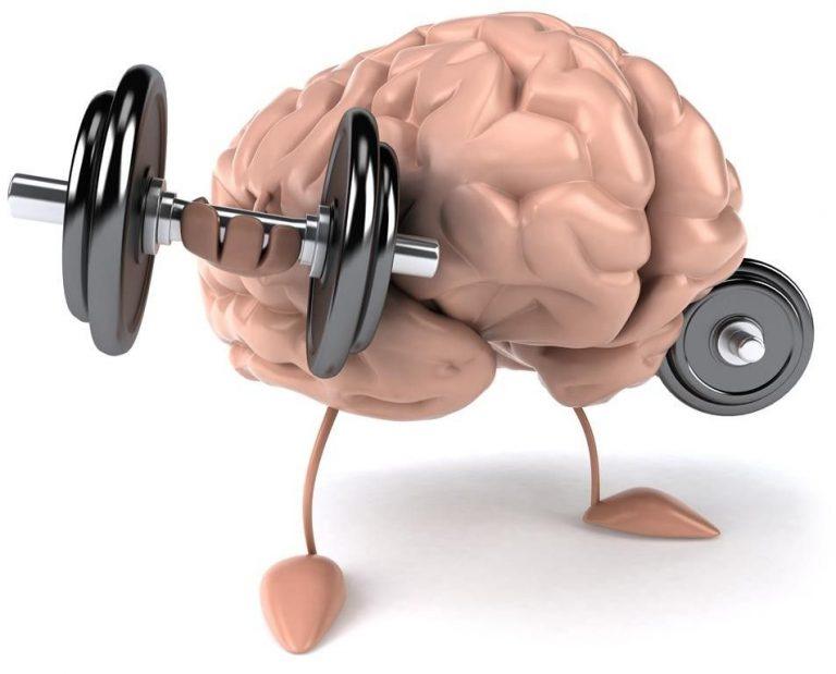 لزيادة الذكاء والتركيز .. نصائح تعرف عليها لزيادة الذكاء والتركيز ……