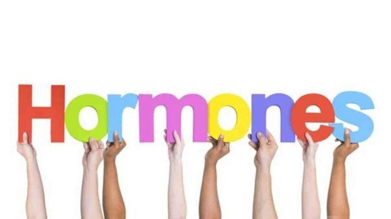 معلومات غريبة عن الهرمونات .. عجائب عن الهرمونات داخل جسم الإنسان –