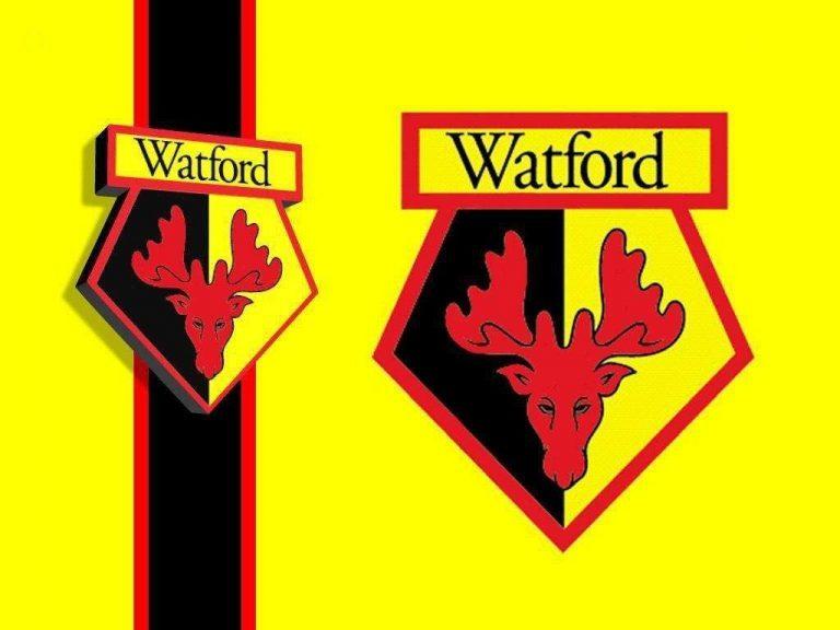معلومات عن نادي واتفورد … تعرف على تاريخ وإنجازات بطل الدوري الإنجليزي الممتاز