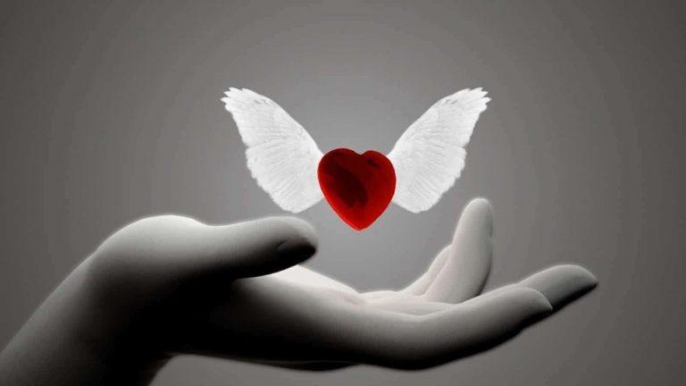 هل تعلم عن الحب … تعريف الحب وما لا تعرفه عنه من حقائق ومعلومات