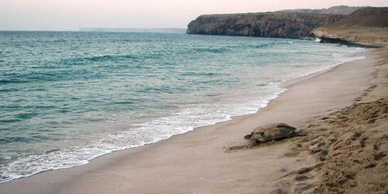 السياحة في الشرقية عمان .. أفضل الأماكن السياحية فى الشرقية عمان ..