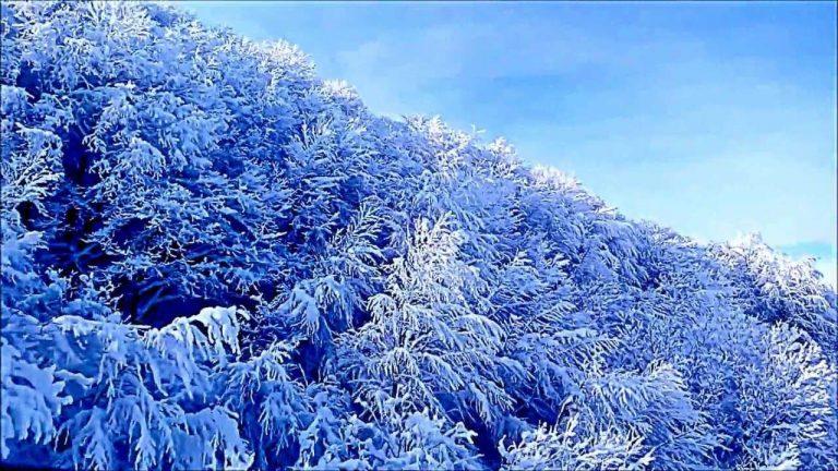 المناطق الثلجية في تركيا في الصيف – أبرز المناطق الثلجية طوال العام في تركيا