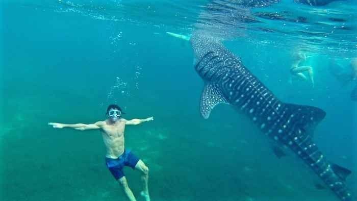 الأنشطة السياحية في سيبو الفلبين : و 8 نشاطات ترفيهية رائعة