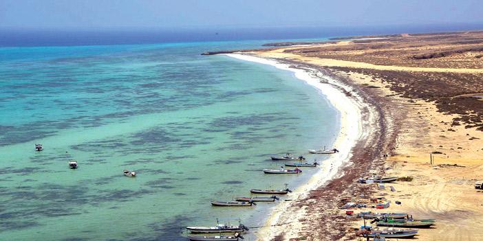 جزر فرسان» سحر الطبيعة