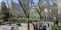 معلومات عن الحي الصيني في نيويورك