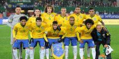 البرازيل في كأس العالم 2010
