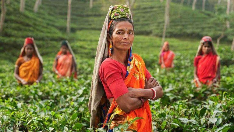 الاسلام في بنغلاديش… معلومات عامّة عن الاسلام في بنغلاديش