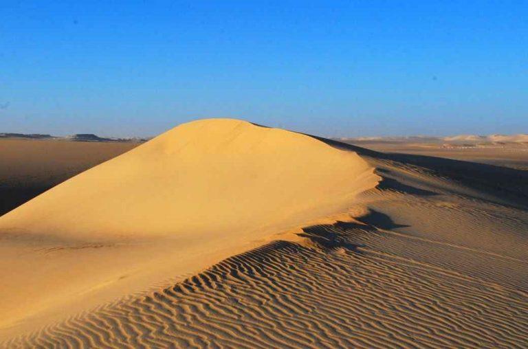 السياحة في الصحراء الغربية | مكان مثالى لرحلات السفارى.ودليلك لقضاء رحلة مميزة