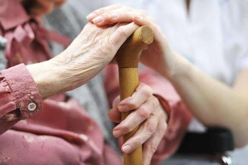 أفكار لليوم العالمي للمسنين… أبرز الأفكار للاحتفال باليوم العالمي للمسنين