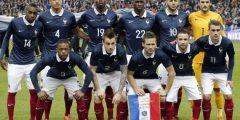 فرنسا في كأس العالم 2014