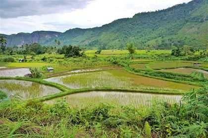 الطبيعة في اندونيسيا – تعرف على جمال الطبيعة والمناخ الساحر