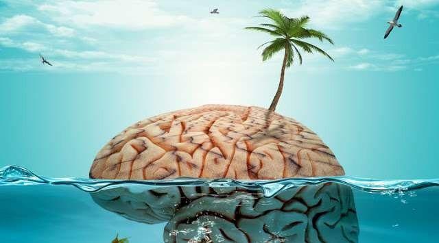 الفرق بين المخ والعقل .. معلومات حول العقل والمخ