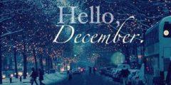 ماهو شهر ديسمبر