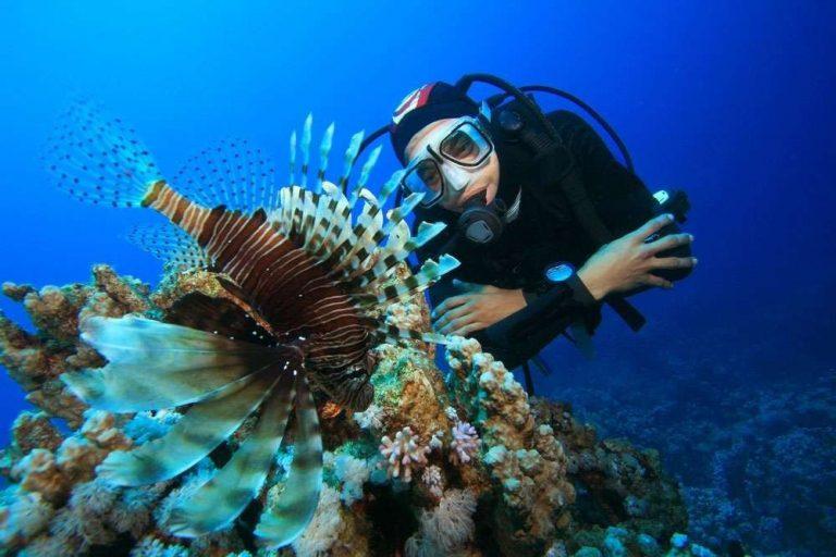 علماء الأحياء البحرية .. أشهر علماء الأحياء البحرية ………………….