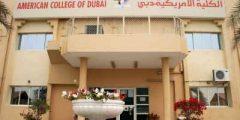 معلومات عن الكلية الأمريكية في دبي