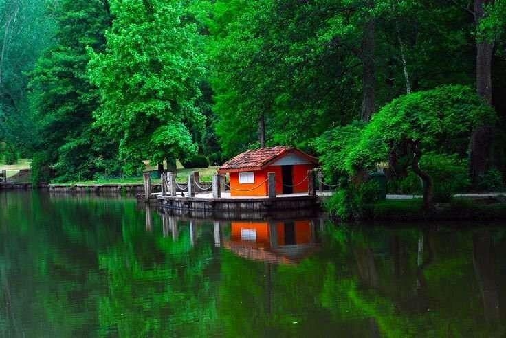 غابات بلغراد في الصيف تركيا .. أفضل الأنشطة التي يمكنك القيام بها في غابات بلغراد اسطنبول