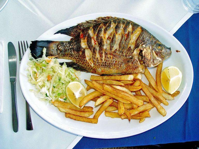اكلات بالسمك ….تعرف على العديد من الأصناف المختلفة واطباق الأسماك اللذيذة