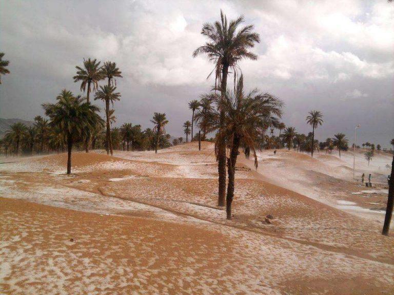 مدينة بشار في الجزائر