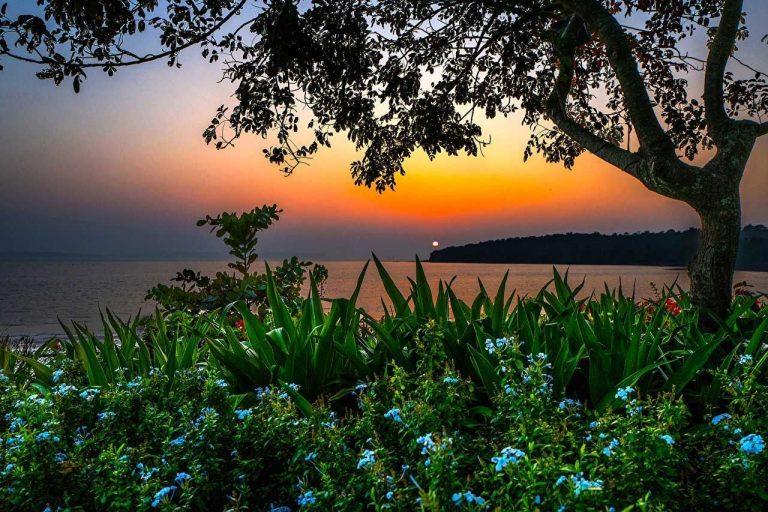 المناظر الطبيعية الخلابة في غوا الهندية