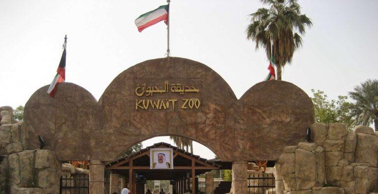 حديقة الحيوان في الكويت… جولة ممتعة مع الحيوانات داخل الحديقة