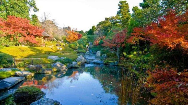 السياحة في كيوتو.. عاصمة السلام اليابانية والناجية من القنبلة النووية –