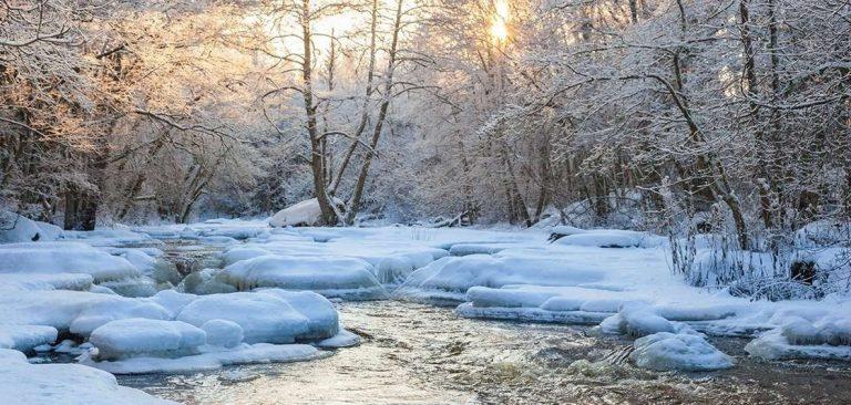 هل تعلم عن الشتاء ؟ معلومات عن فصل الشتاء أبرد فصول السنة