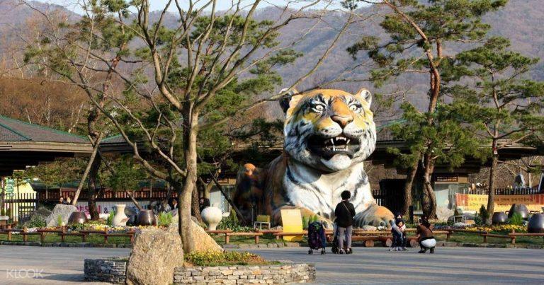 حديقة الحيوان في سيؤول .. دليلك الي حديقة حيوان سيؤول بكوريا الجنوبية | بحر المعرفة