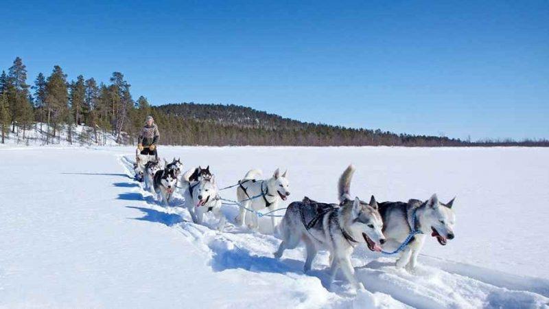 السياحة في فنلندا – أجمل 10 نشاطات رائعة