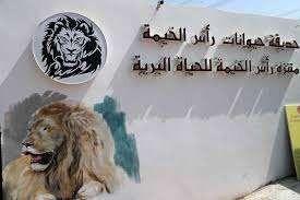 حديقة الحيوان في راس الخيمة…. تعرف على أفضل الأنشطة فى حديقة الحيوان l  بحر المعرفة
