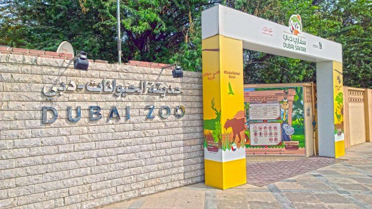 حديقة الحيوان في دبي .. سفاري وحيوانات وأنشطة مذهلة