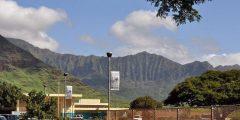 معلومات عن ولاية هاواي الأمريكية