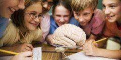 مفھوم التعلم النشط وأھم استراتیجیاته