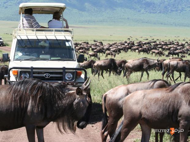 افضل وقت لزيارة تنزانيا….اليك بعض المعلومات المشوقة لزيارة تنزانيا والطقس المناسب.