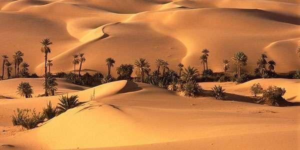 الطقس في قطر… معلومات عن الفصول في قطر والرّياح والأمطار فيها