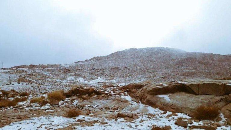 جبل اللوز في الصيف وفي الشتاء – معلومات عن جبل اللوز في السعودية