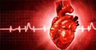 حقائق عن القلب …خمس حقائق مؤكدة عن أهم عضو بالجسم تعرف عليها