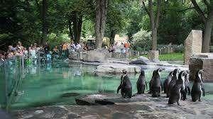 حديقة الحيوان في الرباط … أهم الأنشطة الترفيهية بها ووسائل الحماية ومواعيد العمل بها